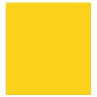 logo brainiak 190px