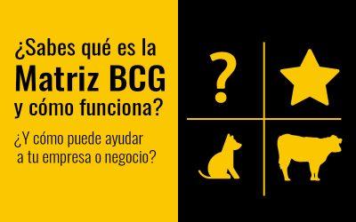 ¿Qué es la Matriz BCG: Incógnita, Estrella, Vaca y Perro?