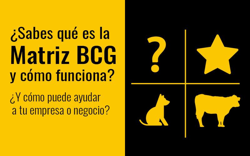 matriz-bcg-incognita-estrella-vaca-perro--brainiak