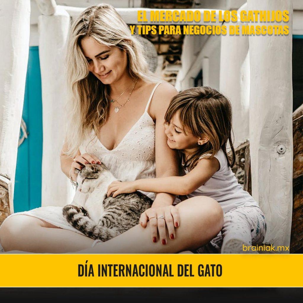 DIA INTERNACIONAL DEL GATO - EL MERCADO DE LOS GATHIJOS Y TIPS PARA NEGOCIOS DE MASCOTAS