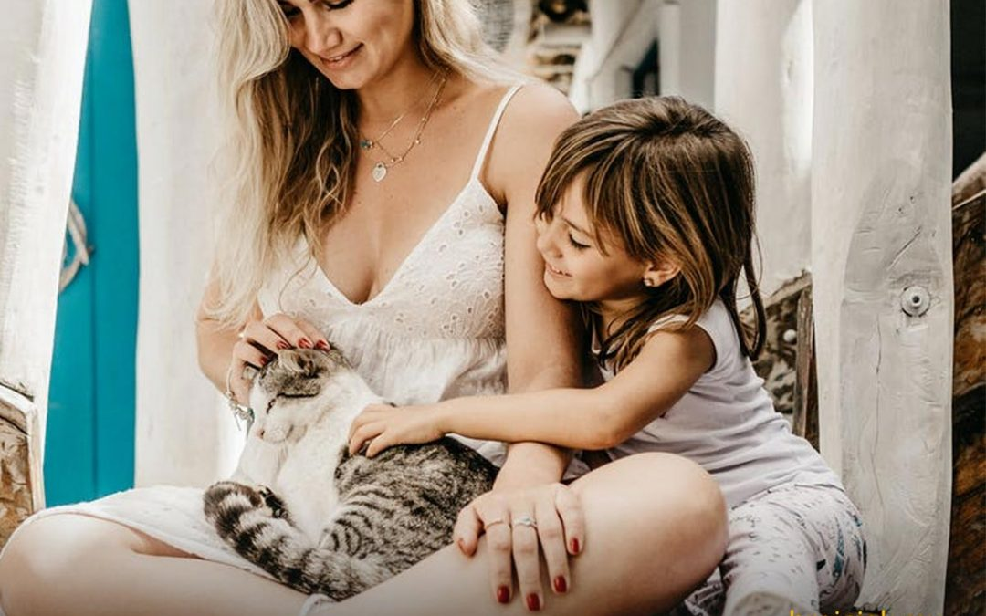 Día Internacional del Gato – 8 Agosto | El mercado de los Gathijos Y Tips para Negocios de Mascotas